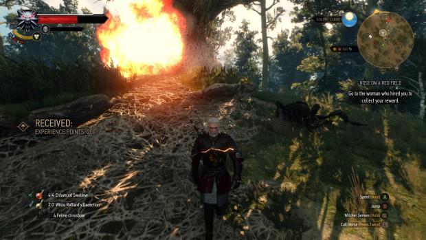 Esplosioni alle spalle di Geralt. Da qualche parte ci sono o c'erano ragni giganti ma scusate non ingrandisco l'immagine per cercarli.