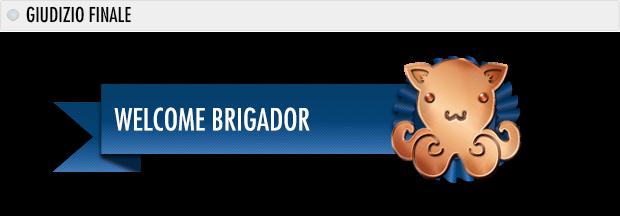 medaglie brigador