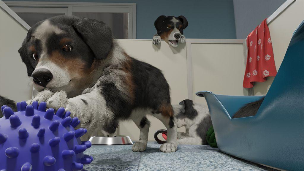 Cussioli su Dog Trainer